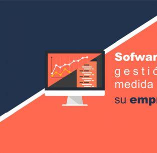 software-de-gestion-a-medida