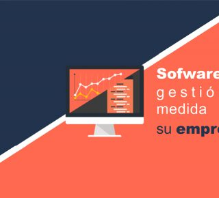 software-de-gestion-a-medida